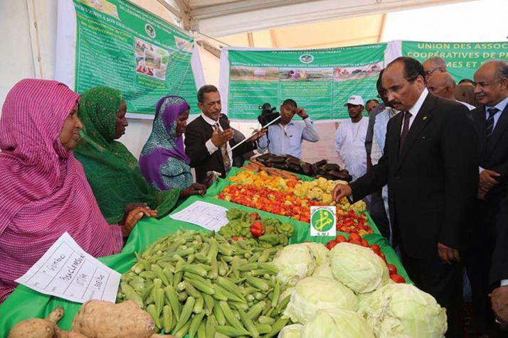 Le président mauritanien Mohamed Ould Abdel Aziz inspecte un marché de produits agricoles au Sud du pays. © M. Naïli