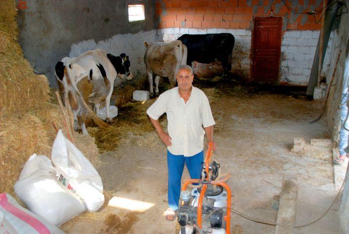 Ibrahim Mejri dans son exploitation laitière à Sidi Thabet, au nord-ouest de Tunis. Photo : Antoine Hervé