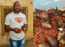 Emmanuel Tito est producteur d'escargots à Cotonou. Certains escargots pèsent plus de 250 grammes. Photos : G. C. Roko