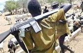 Des paysans en viennent à prendre des armes pour défendre leurs bêtes ou leur terre. Photo : DR